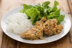 Konijn met saus, gekookte rijst en salade royalty-vrije stock fotografie
