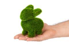 Konijn van in hand die gras wordt gemaakt Stock Afbeelding