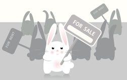 Konijn voor verkoop Stock Afbeelding