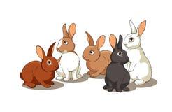 konijnen Vector Illustratie