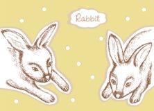 konijnen Vector illustratie Royalty-vrije Stock Afbeeldingen