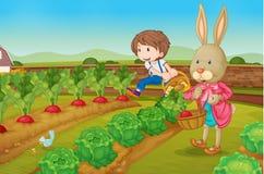 Konijntje en jongen in de tuin Stock Foto's