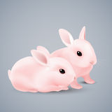 konijntjes Royalty-vrije Stock Afbeeldingen