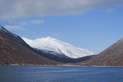 Koning Cove Alaska stock afbeeldingen