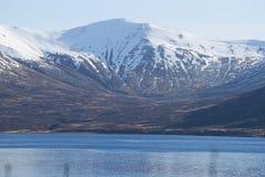 Koning Cove Alaska stock afbeelding