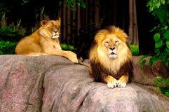 Koning en koningin Stock Afbeeldingen