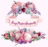 Koning Protea Bouquets Vol 1 vector illustratie