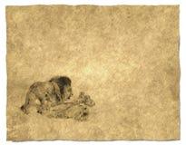 Koning van Achtergrond 2 van het Dier royalty-vrije illustratie