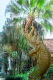 Koning van Nagas Stock Afbeeldingen