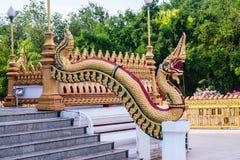 Koning van Nagas Royalty-vrije Stock Afbeeldingen