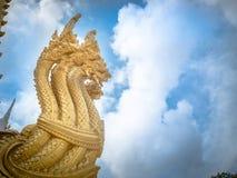 Koning van serpent Stock Foto's
