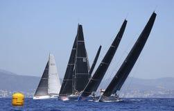 Koningenkop het varen regatta in palma DE Mallorca stock foto