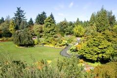 Koningin Elizabeth Park, Vancouver, BC Stock Fotografie