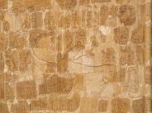 Koningin Hatshepsut en heilige koehulp Stock Fotografie