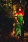 Koningin van bos Royalty-vrije Stock Fotografie