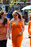 Koninginnedag 2011 Royalty Free Stock Photos