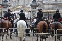 Koninklijk Huwelijk - de paarden van de Politie Royalty-vrije Stock Foto's