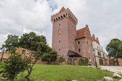 Koninklijk Kasteel in Poznan Royalty-vrije Stock Foto's