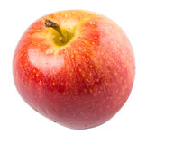 Koninklijke Gala Apple III Royalty-vrije Stock Fotografie