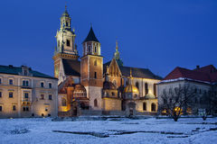 Koninklijke Kathedraal - Heuvel Wawel - Krakau - Polen Royalty-vrije Stock Afbeelding