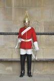 Koninklijke wacht Stock Afbeelding