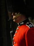 Koninklijke wacht in Londen Stock Foto's