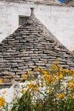 Koniskt tak av det traditionella trullihuset i det Aia Piccola bostadsområdet av Alberobello, Puglia Italien Blommor i förgrund arkivfoto