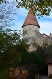 Koniskt torn till och med träd, Rothenburg obder Tauber, Tyskland arkivfoto