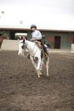 koniu 1 rider Fotografia Royalty Free