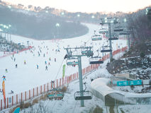 Konjiam Ski Resort, Seoul, South Korea. Holiday makers skiing at ski resort Stock Photography