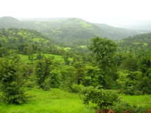 Konkan-Landschaft im Frühjahr Stockfotografie