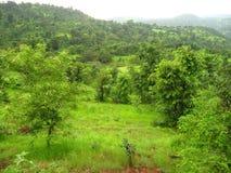 Konkan landskap i vår Arkivfoton