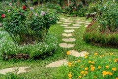 Konkret bana i trädgård Arkivfoton