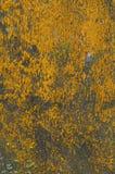 konkret rått för bakgrund Royaltyfri Foto