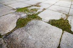 Konkret stenläggningtextur Arkivfoton