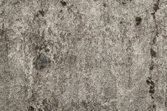 konkret textur Arkivfoto