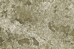 konkret textur Arkivfoton