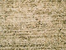 Konkret textur Royaltyfri Fotografi