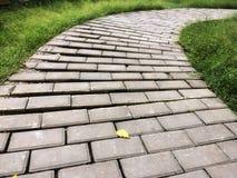 Konkret vandringsledordning vid kurvan i trädgården Solsken på bana med det stupade bladet arkivfoto