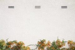 Konkret vit vägg arkivfoton