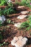 Konkreta Paw Print Path i trädgården Royaltyfri Fotografi