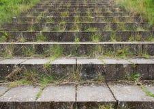 Konkreta tegelstentrappamoment med det gröna ogräset Arkivfoton