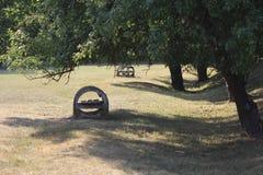 Konkrete Bank unter einem Baum lizenzfreies stockbild