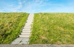 Konkrete Treppe zwischen dem Gras Stockfotos