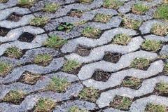 Konkreter Boden, Beschaffenheits-Dekorationsziegelsteinblock auf Gartengehweg, Steinweg und Kiesel im japanischen Park, grünes Mo lizenzfreie stockfotografie