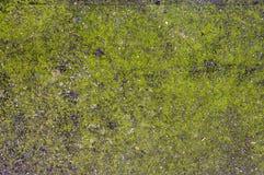 Konkreter Boden mit interessantem strukturiertem Muster Stockfotos