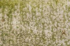 Konkreter Boden mit interessantem strukturiertem Muster Lizenzfreie Stockfotos