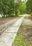 Konkreter Gehweg durch allgemeinen Park Lizenzfreie Stockfotografie