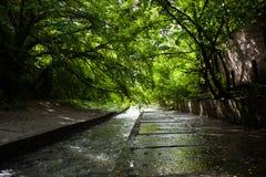 Konkretes Flussbett und Banken des Lybid-Flusses (Kyiv) Lizenzfreie Stockfotografie