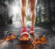 Konkurencyjny biegacz zdjęcie royalty free